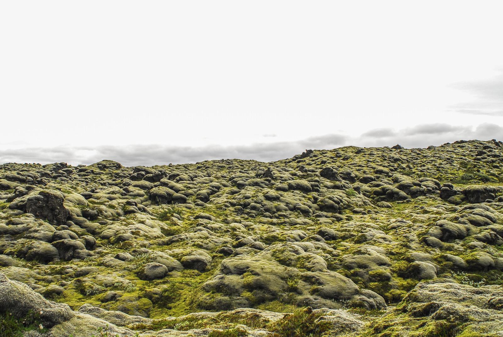 Iceland 003_005